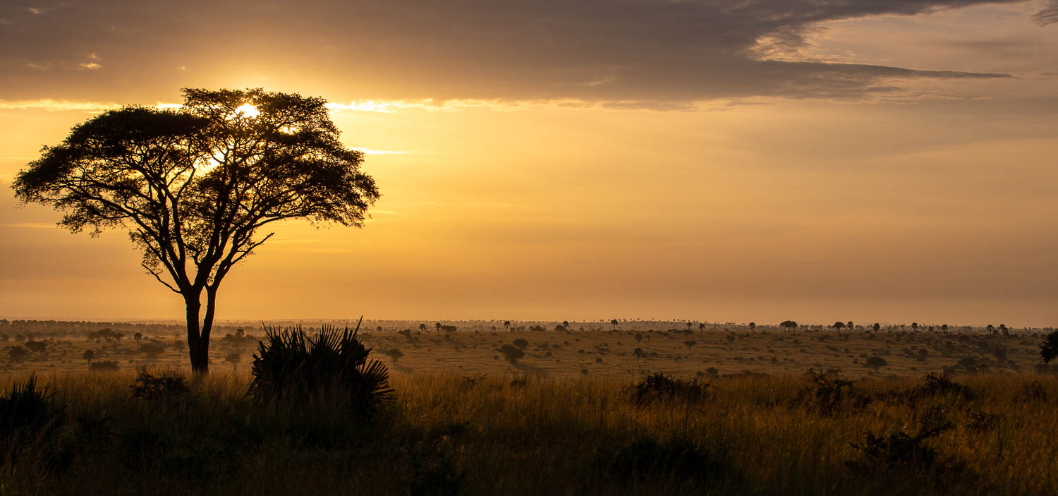 Murchison Falls Sunrise
